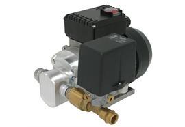 Elettropompa a ingranaggi ad alta potenza EP-400 DS con pressostato